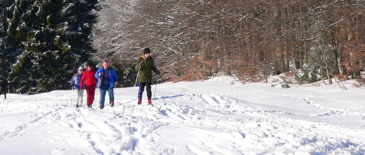 bayerischer-wald-langlaufurlaub-winter-langlaufen-1200