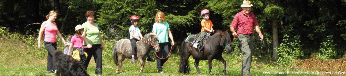 Ponyhof Bayerischer WaldReiturlaub für junge Leute in der Oberpfalz