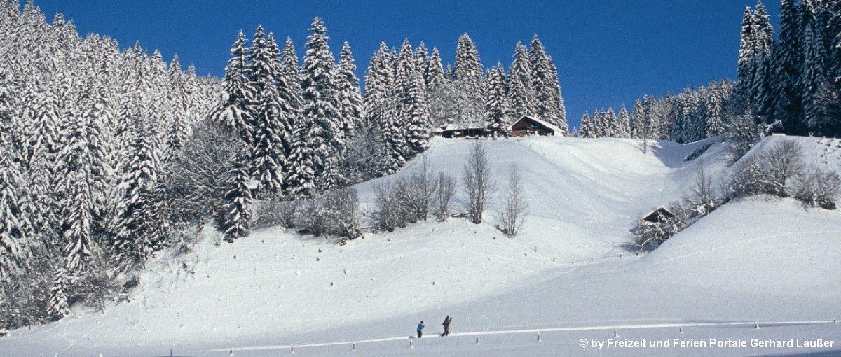 Bayerischer Wald Ferienhütten für Skiurlaub Berghütten zum Skifahren