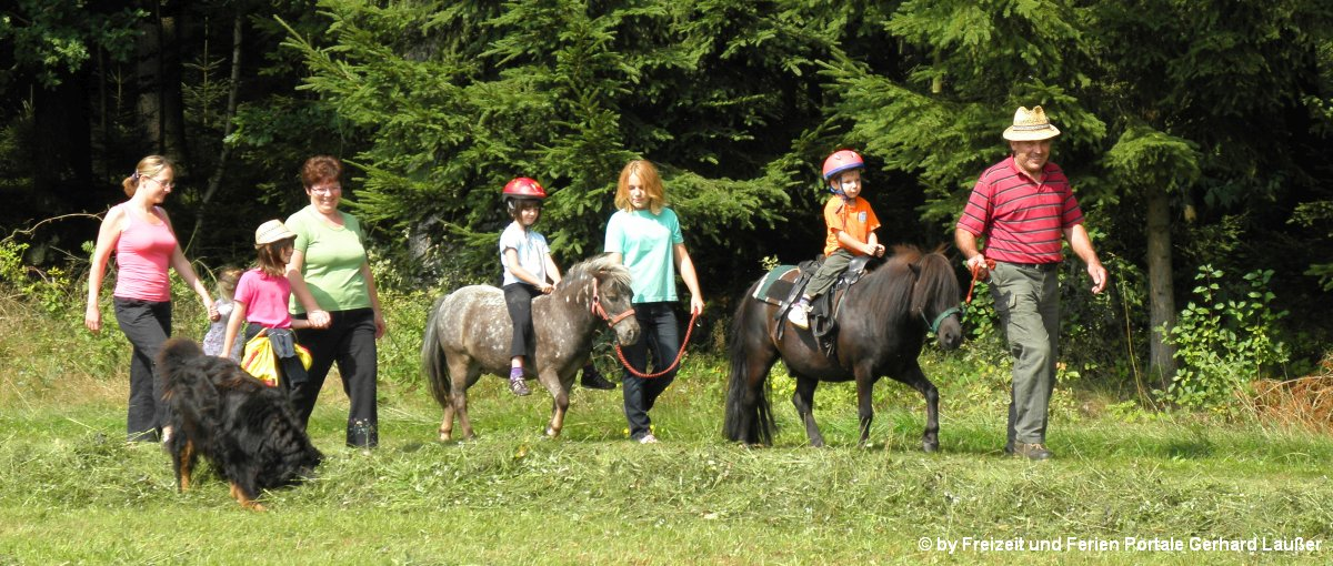 Bayerischer Wald Reiterferien für Erwachsene in Bayern